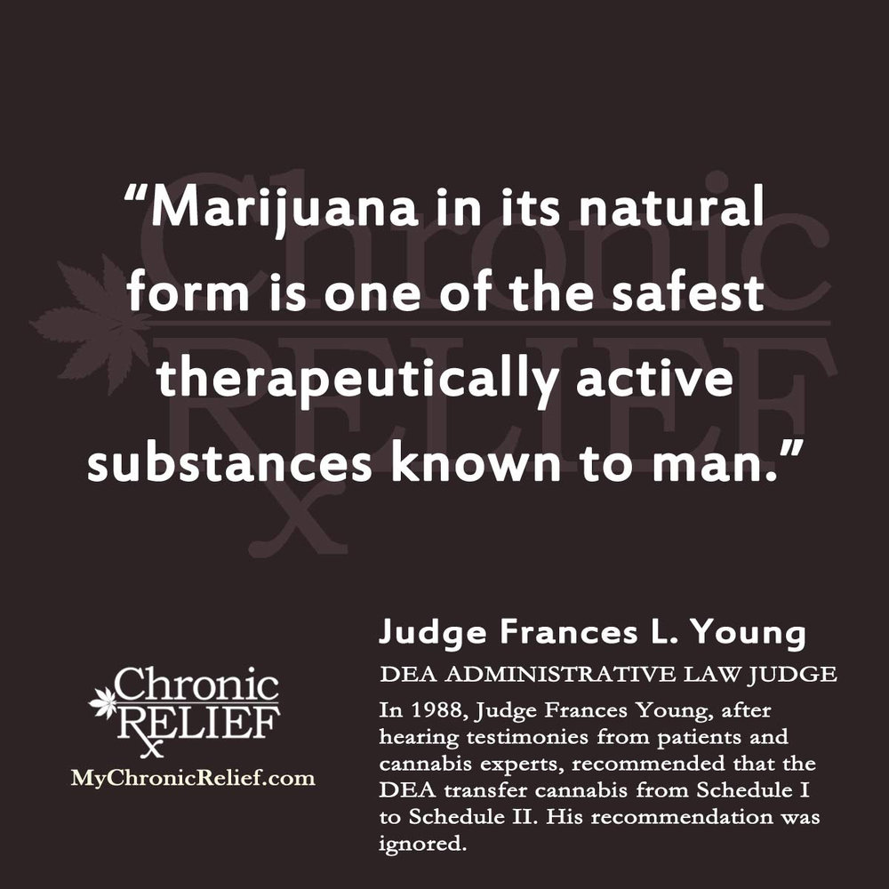 dea 2-judge-quote-medicinal-marijuana-quotes.jpg