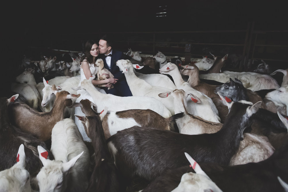 Funny Wedding photo by wedding photographer Valdur Rosenvald