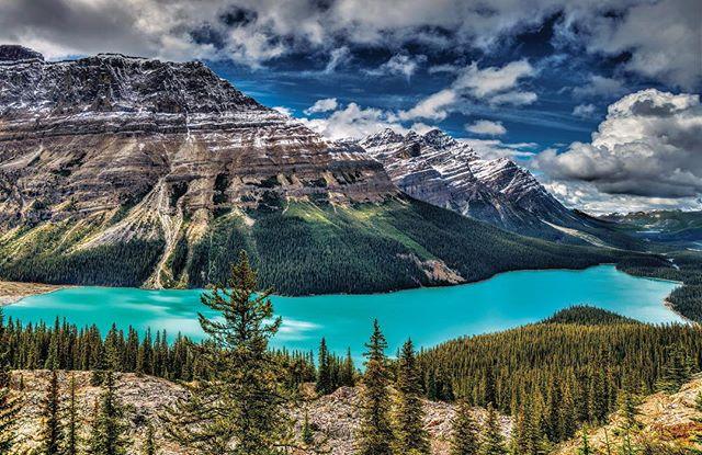 Magnificent Lake Peyto in #Alberta. . . . . #explorecanada #explorealberta #mountains #rockies #beautifuldestinations #backcountry