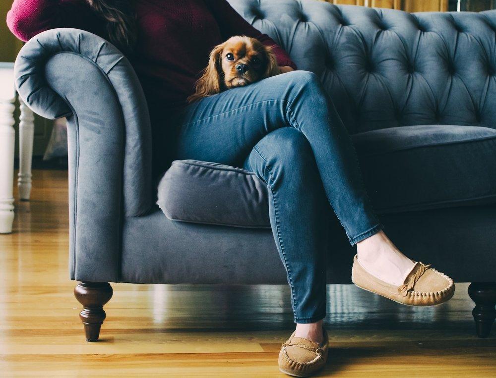 - Upholstery