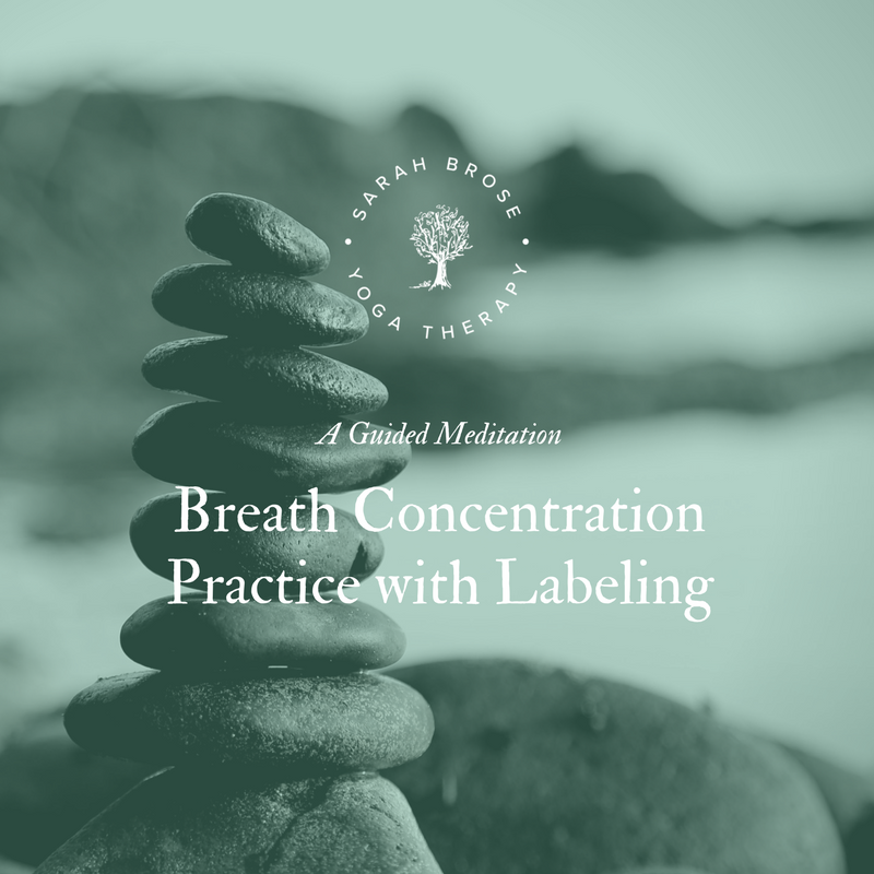 Breath Concentration Practice with Labeling meditation