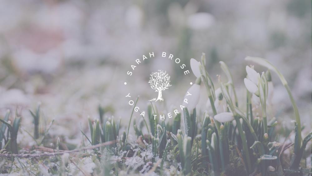 Blog Banner- Sarah Brose-2.png