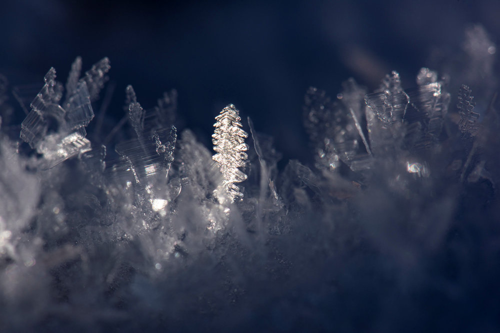 Ice Crystals Oct9 Fav web.jpg
