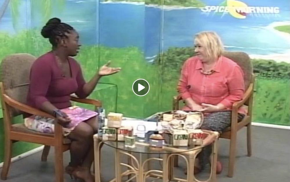 Susan Mains onGIS-Spice Morning - November 2017