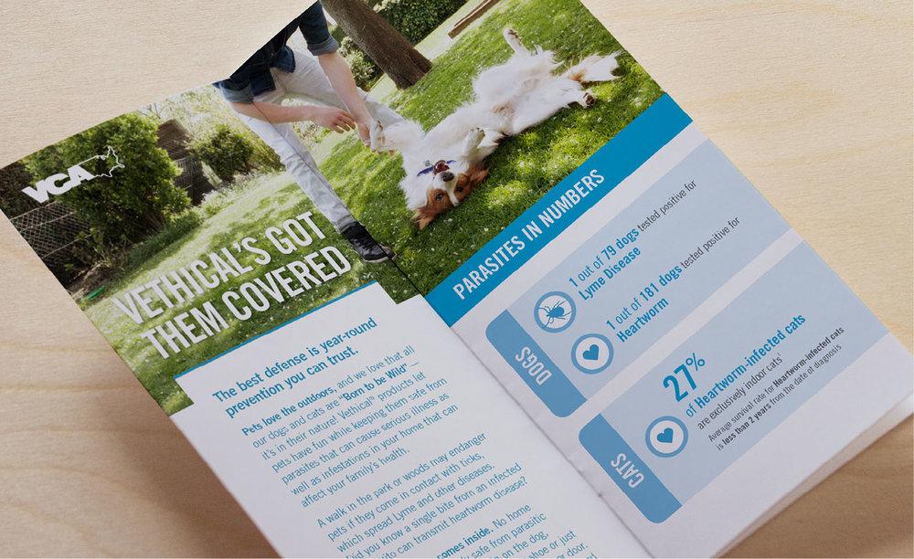 vethical-brochure-photo.jpg