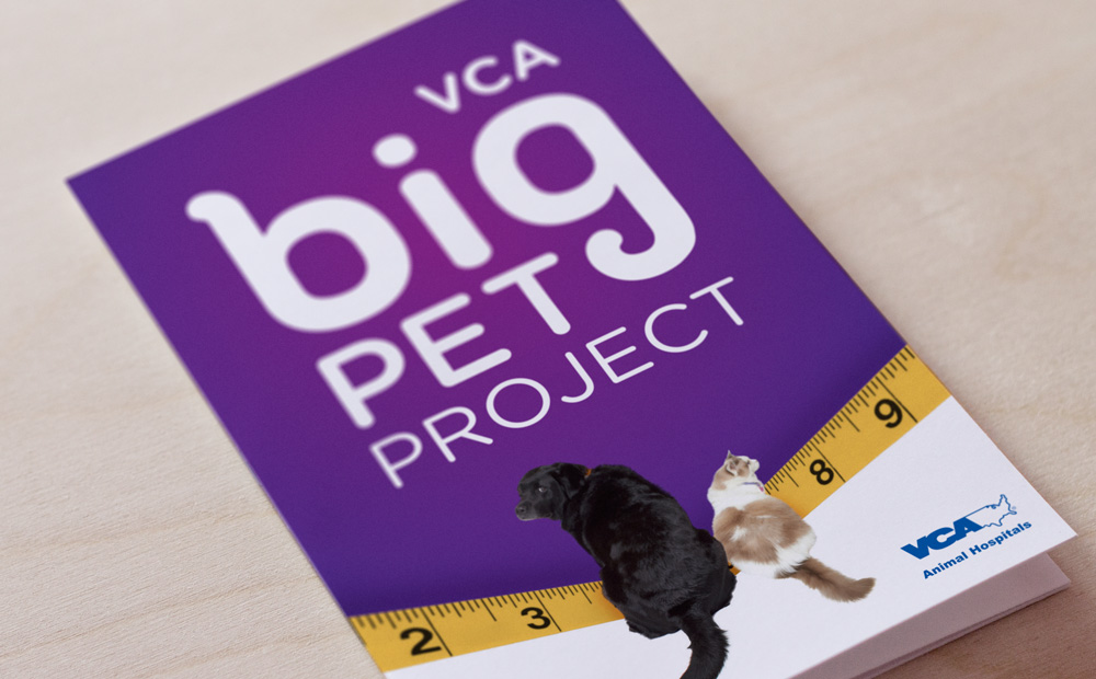 big-pet-project-brochure