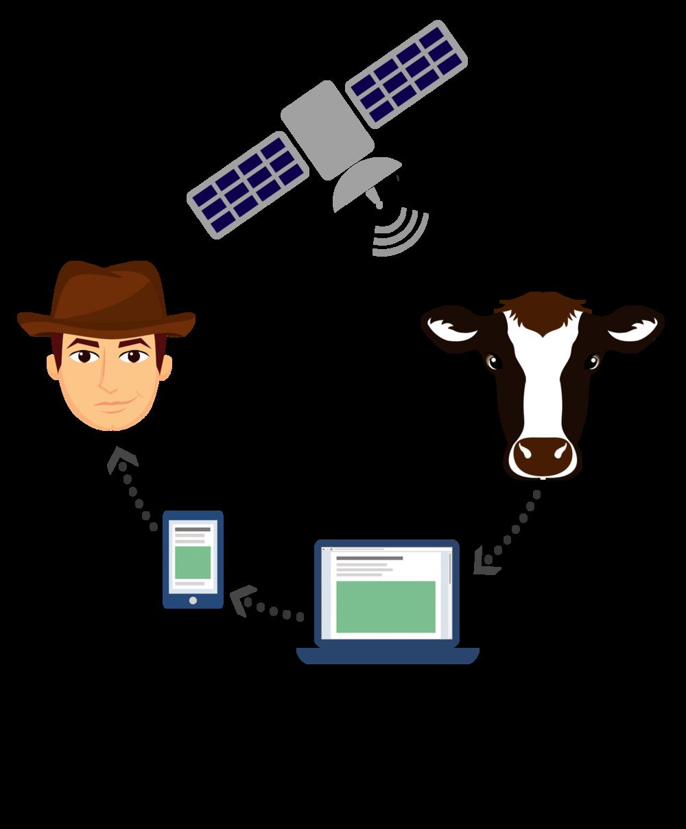- El animal usa un dispositivo inteligente externo, que transmite información a nuestro servidor, para luego procesar y analizar esos datos recibidos.