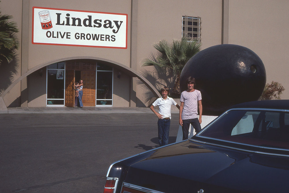 Michael Wiggins, John Wiggins, Lindsay, CA, 1976 (photo: James W. Wiggins, Jr.)