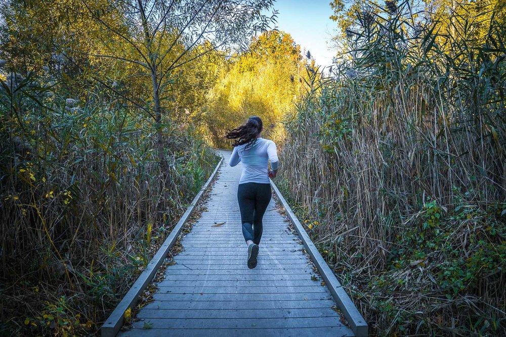 <strong>#2:</strong> John Kiernan Nature Trail