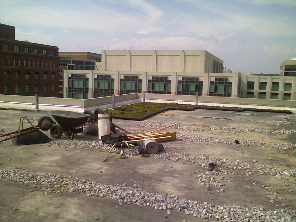 Construction of the labyrinth site
