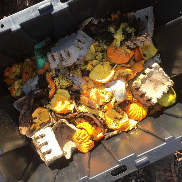 This is what compost ready food scraps look like, materials we know and use in the kitchen. Thanks @ricksproduce for keeping it clean. #greensandbrowns #soilandpeople #community #compost #losangeles
