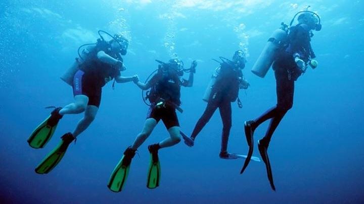 four+divers.jpg