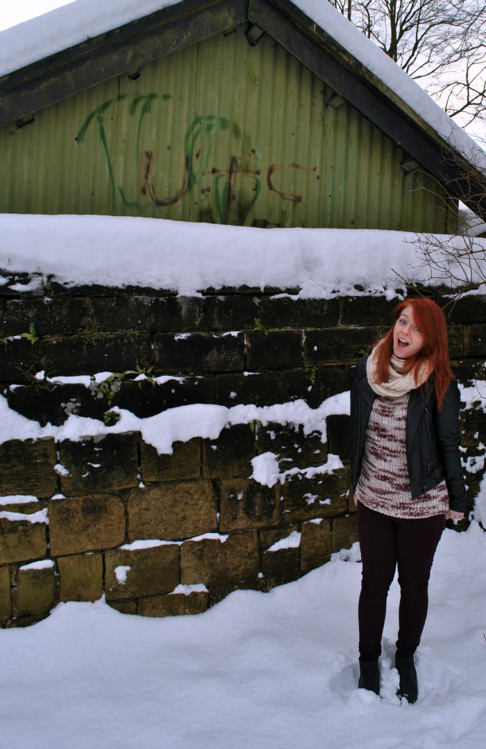 snowbusiness1