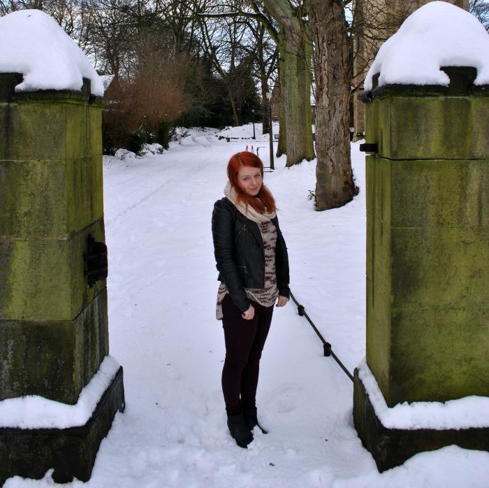 snowbusiness2