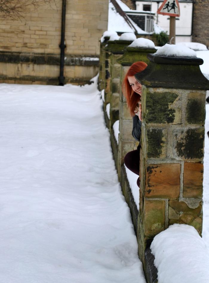 snowbusiness3