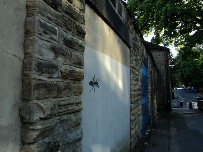 chapel allerton alleyway