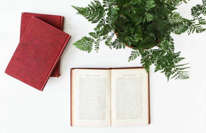 book flatlay