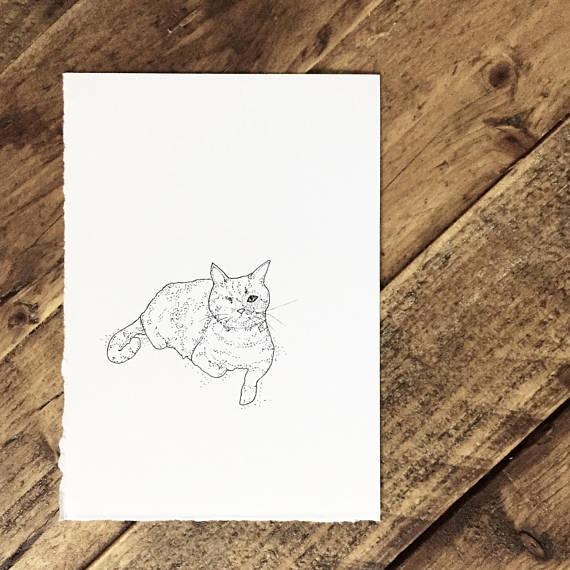 pet portrait.jpg