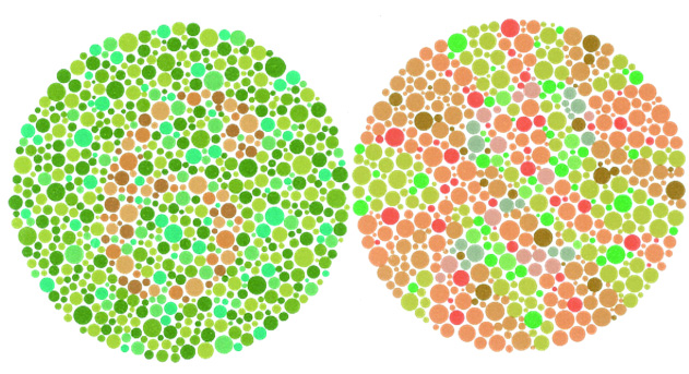 "This is the Ishihara Color Vision Test. If you don't see a ""6"" in the left circle and a ""2"" in the right, you probably suffer from some type of color deficiency."