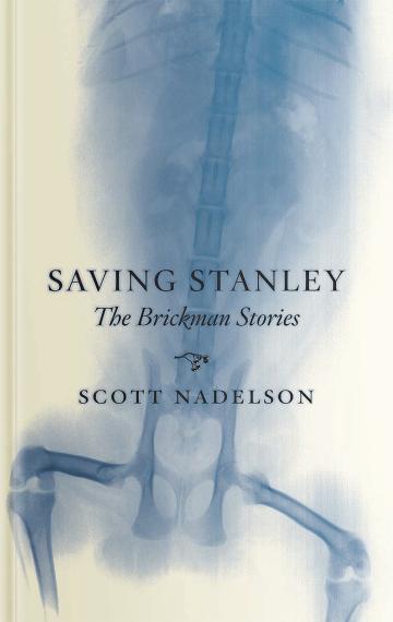 Saving-Stanley-360x570.png