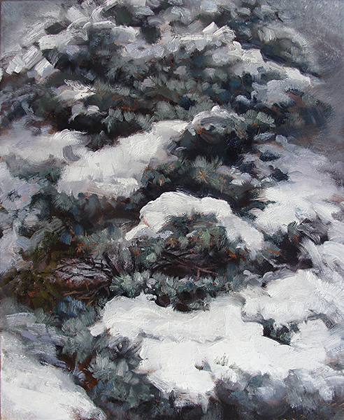 Snowy Spruce Boughs,   18 x 24 oil on canvas The dollops of snow on the boughs of this spruce made for some interesting shapes and patterns.