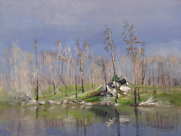 Rebirth After the Fire  ,  11 x 14 oil on panel This area burned in the 2011 Pagami Creek wildfire, and many tree trunks are still standing. On this day, the sun had just come out after a thunderstorm. The dark clouds created a beautiful backdrop for the bare sunlit branches.