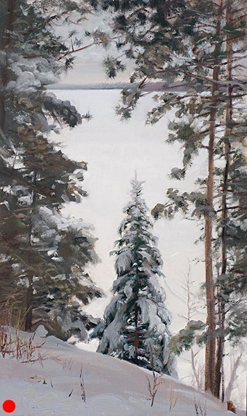 Spruce Near the Slope , 12 x 20 oil on linen Painted on the slope overlooking Lower Webb Lake in Wisconsin. SOLD