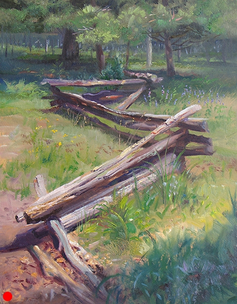 Split Rail, Wildflowers , 12 x 16 oil on panel Landscapes are generally ruled by the eternal horizontal, regularly planted with verticals. My eyes, then, often dart toward the diagonals.
