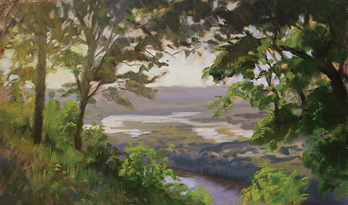 Wyalusing Sunset,    12 x 20 oil on panel