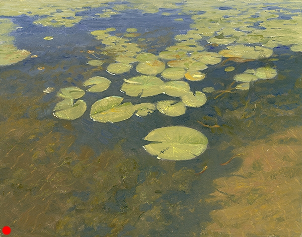 Lily Pads , 11 x 14 oil on panel SOLD