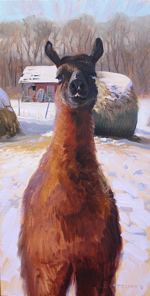 Llama  30 x 15 oil on canvas