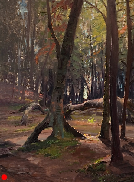 Grand Marais Woods , 12 x 16 oil on panel I didn't see any furry-toed Hobbits while painting this but I was looking for 'em. SOLD