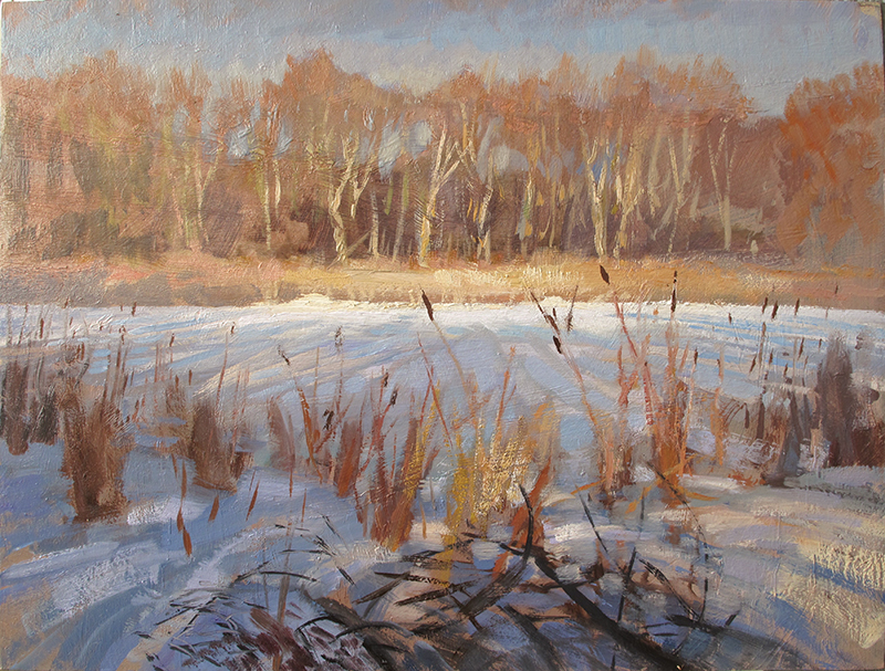 Bird Sanctuary , 12 x 16 oil on panel Painted on location in the bird sanctuary at Lake Harriet in Minneapolis.