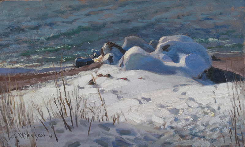 Shadow Shapes, North Shore , 12 x 20 oil on panel