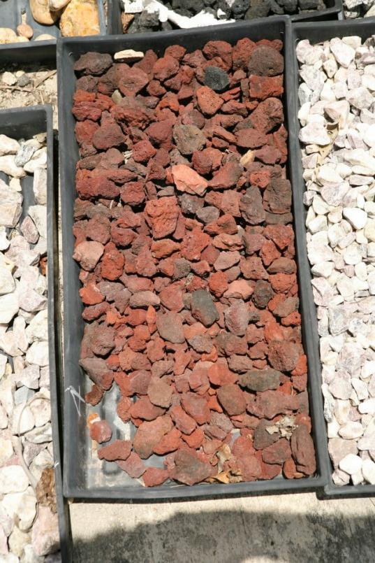 pebbles16_op_537x805.jpg