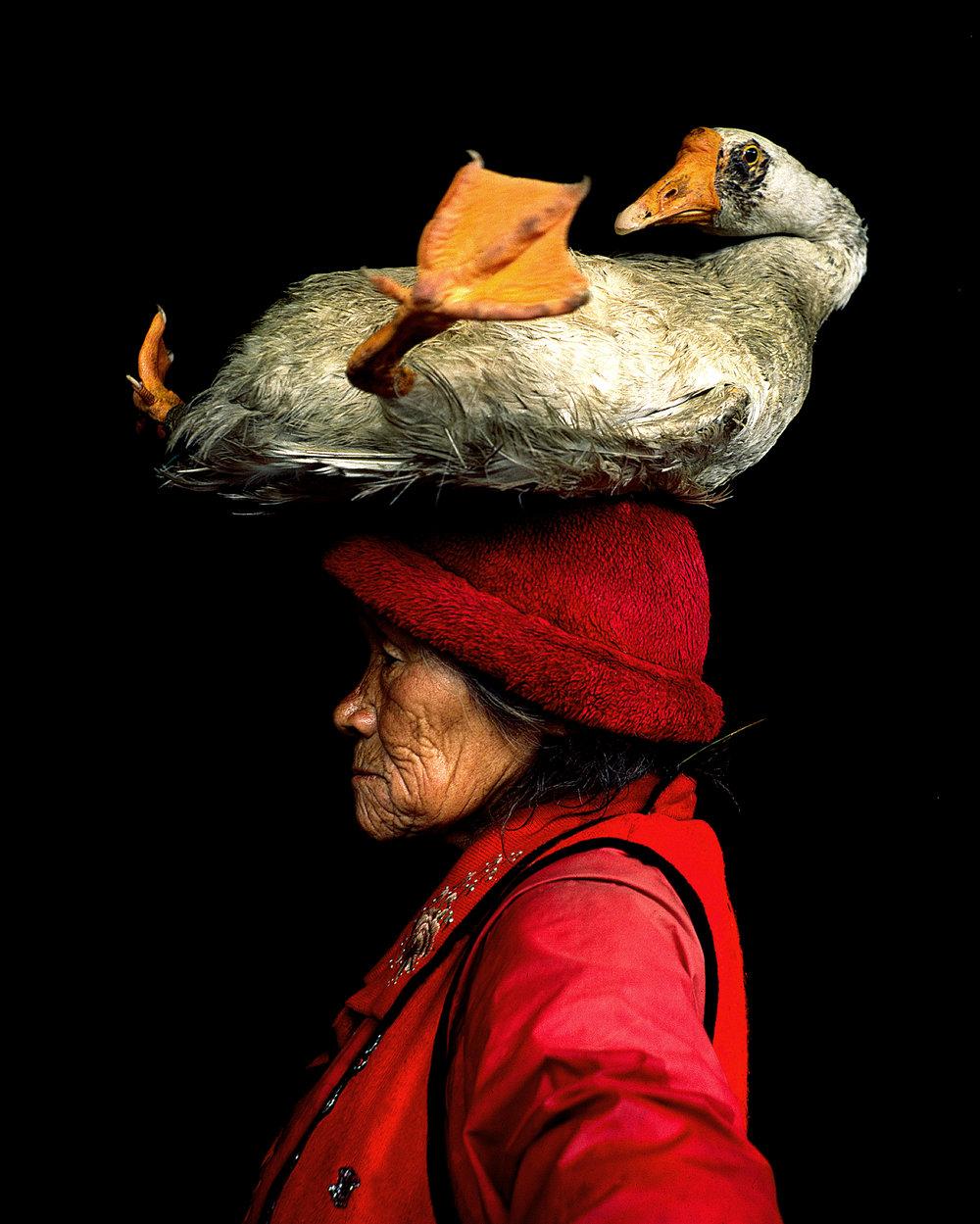Image by Cristina Mittermeier