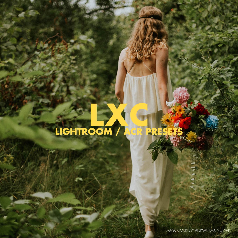 LXC - Lightroom & ACR Presets — Tribe Archipelago™
