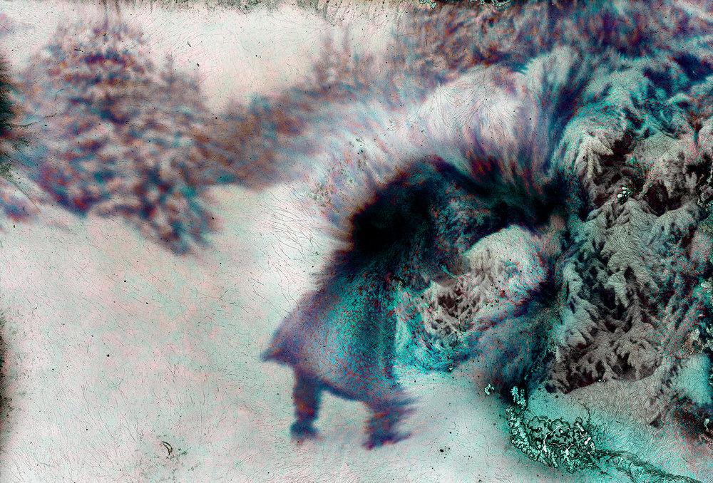 Untitled-(Intothewild)_web.jpg
