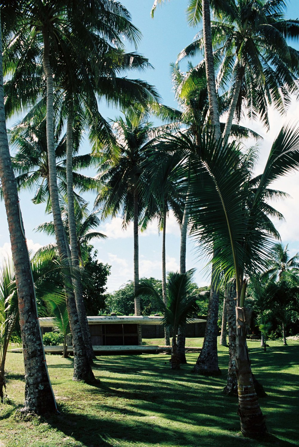 Sinalei Reef Resort.jpg
