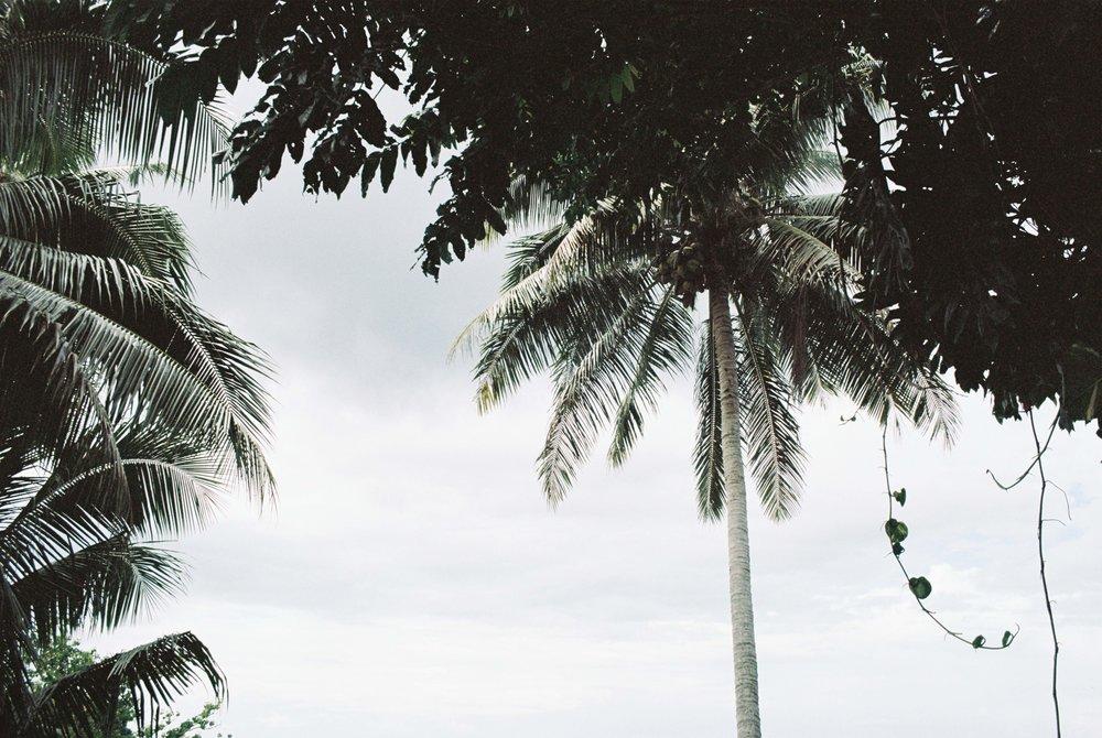 Sinalei Reef Resort on Film 3.jpg