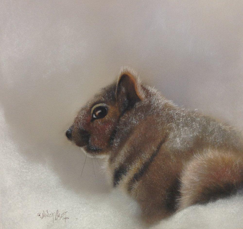 Squirrel 2.JPG
