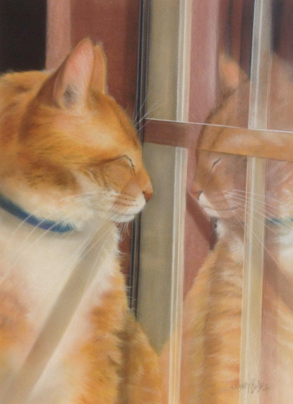 Reflection 2.JPG