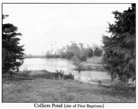 Colliers_Pond.jpg