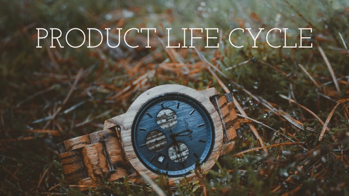 Product life cycle by Mad Marketing nyc based consultant