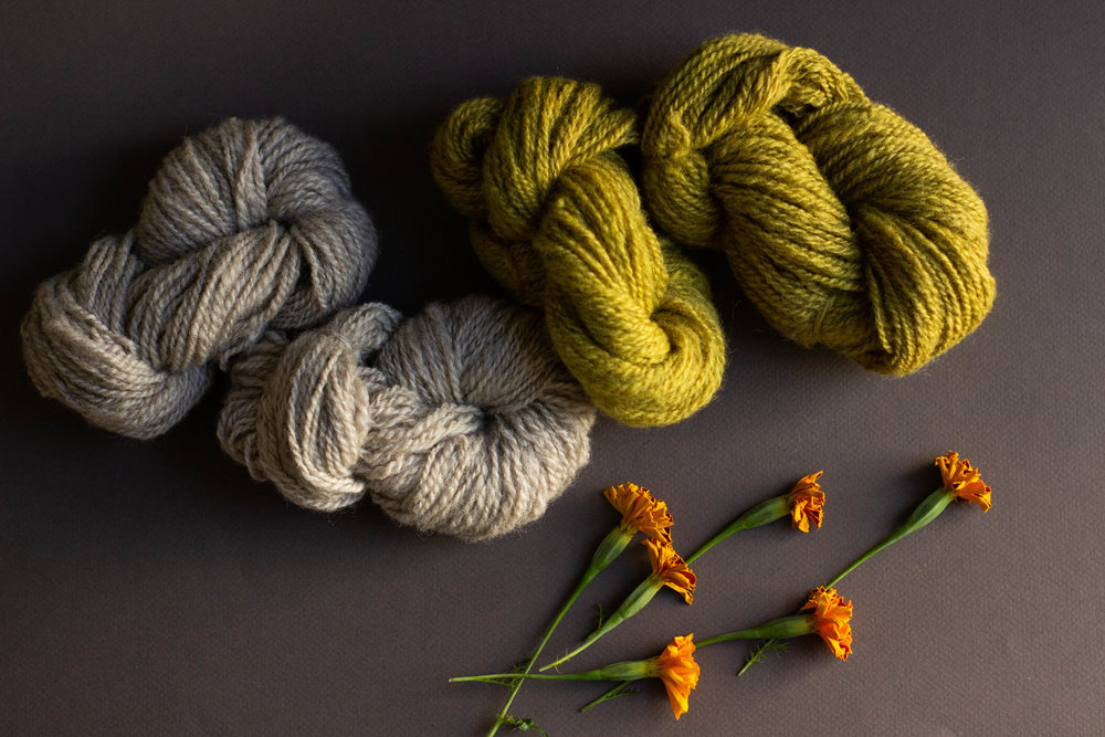 Marigold naturally dyed wool