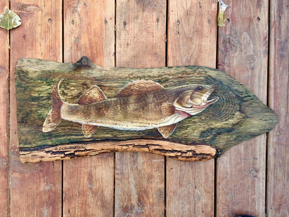 Walleye on wood - by ©Liz Goodrick-Dillon