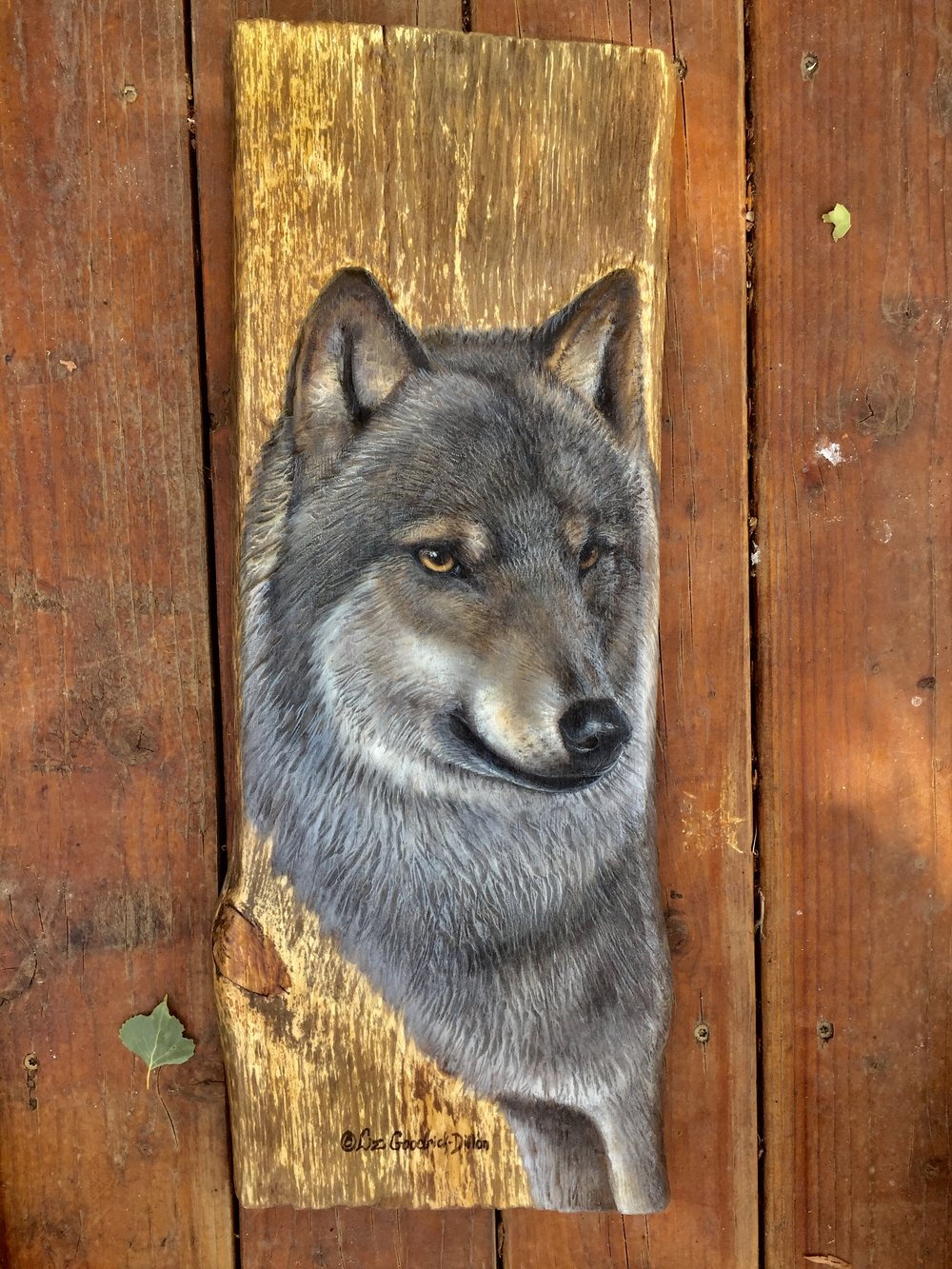 Gray Wolf on wood by - by ©Liz Goodrick-Dillon