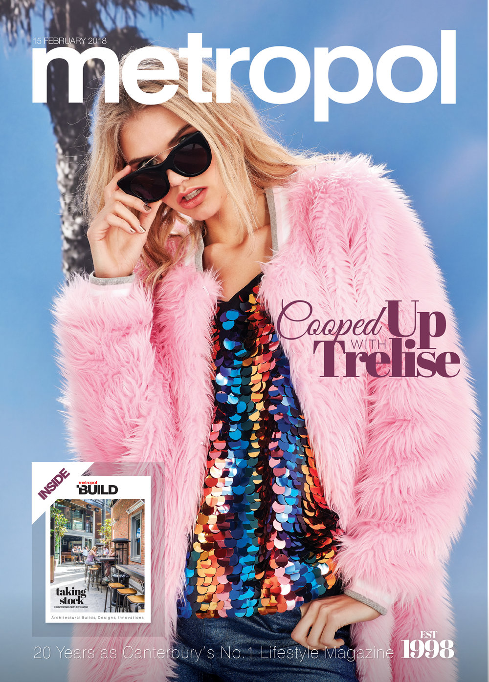 Read the Feb 15th issue of Metropol