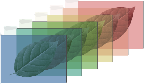 hyperspectral-hoja-2.png
