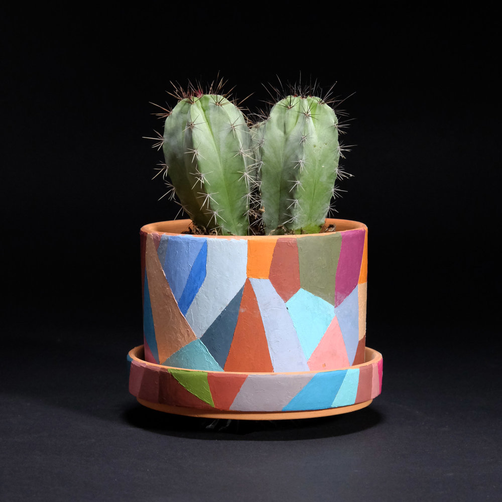 Other_Plants_Pots_for_Puerto_Rico_kristin_1.jpg